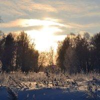 Сибирская зима :: Ангелина Цветкова