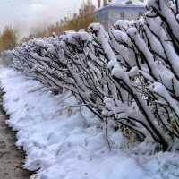 октябрь. первый снег :: Андрей Борисенко