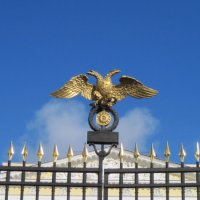 Парящий орел :: Маера Урусова
