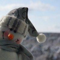 Снеговик :: Вероника Мурашова