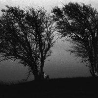Silence (35 mm) :: Александр Коновалов