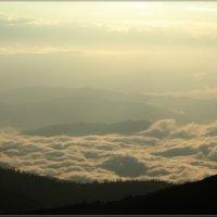 Раннее утро в горах :: galina tihonova