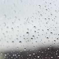 Первый дождь в этом году :: Viktoriya Grigoreva