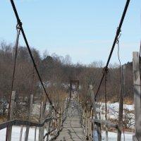 Старый мост :: Светлана Телегина