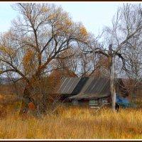 ...деревенская осень... :: Ира Егорова :)))