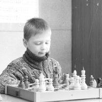 Шахматы :: Наталья Плотникова