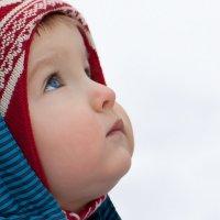 Ждал сегодня птичек с юга... Пока нет, снег. :: Александр Рыбалка