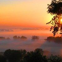 утренний туман :: valeriy g_g