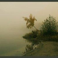 Утро туманное, утро седое :: Ольга Солнечная