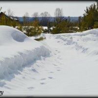 Зима^^ :: Юлька Васковская