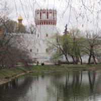 У Новодевичьего монастыря :: Маера Урусова