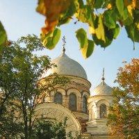 Свято-Покровский храм :: ольга хадыкина