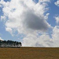 Облако падает :: Юлия Говорова