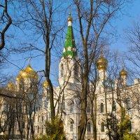 В Новодевичьем монастыре :: Валентин Яруллин