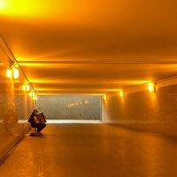 В золотом переходе... :: Ирэна Мазакина