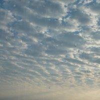 небо :: Евгений Калинин