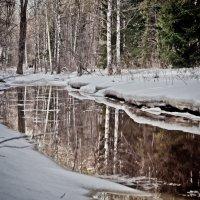 Ранняя весна :: Григорий Храмов