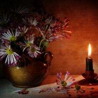 Хризантемы :: Ирина Елагина