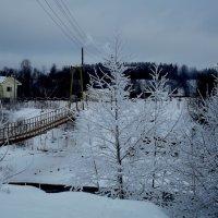 вид на мост :: Сергей Кочнев