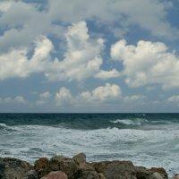 Средиземное море сегодня. :: Lidiya Dmitrieva