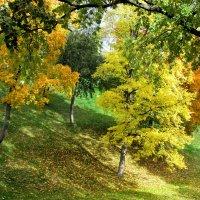 Царицынская осень :: галина северинова