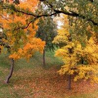 Осень в Царицыно :: галина северинова