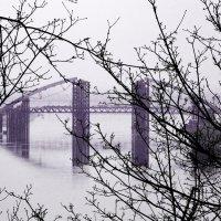 мост :: Игорь Кузьмук