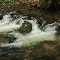 Поток :: Вальтер Дюк