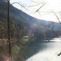 Лебединое озеро :: Татьяна Лейко