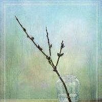 Весна (аллегория) :: Марина Складоновская