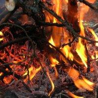 пляски огня :: Марина Голуб