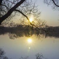 закат у реки :: Алексей Жариков