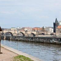 Гармония в Праге :: Алексей Морозов
