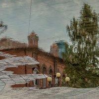 Утро после дождя :: Павел Федоров