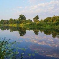 Река утром :: Юрий Стародубцев