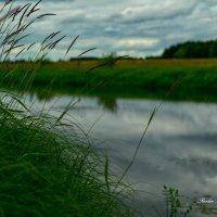 природа и река! :: סּﮗRuslan HAIBIKE Sevastyanovסּﮗסּ