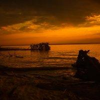 Обское море.Закат. :: Жанна Мальцева