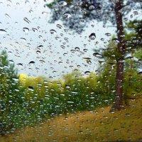 дождь :: Александр Прокудин