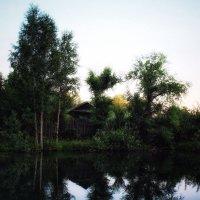Отражение природы :: Андрей Туксунов