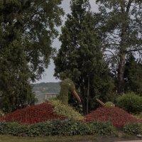 Ландшафтный дизайн в городе Находка :: Нина Борисова