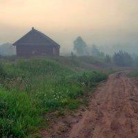 Неподвижно стояли деревья :: Валерий Талашов