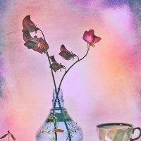 Розовые цветы :: Aioneza (Алена) Московская
