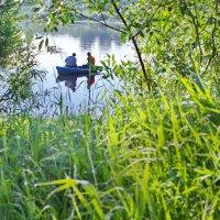 Рыбаки на Сухоне :: Валерий Талашов