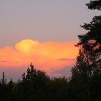 розовое облако :: Александр Прокудин