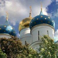 Купола Успенского собора :: lady-viola2014 -