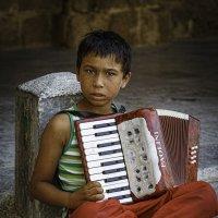 Ulichni muzikant :: egis kunigiskis
