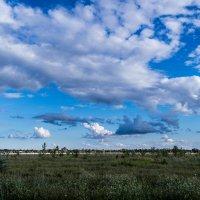 Облака 3 :: Владимир Сквирский