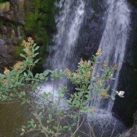 водопад :: İsmail Arda arda