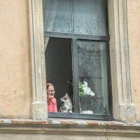 В окне напротив :: MVMarina