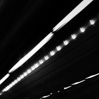 тоннельное :: Лара Leila